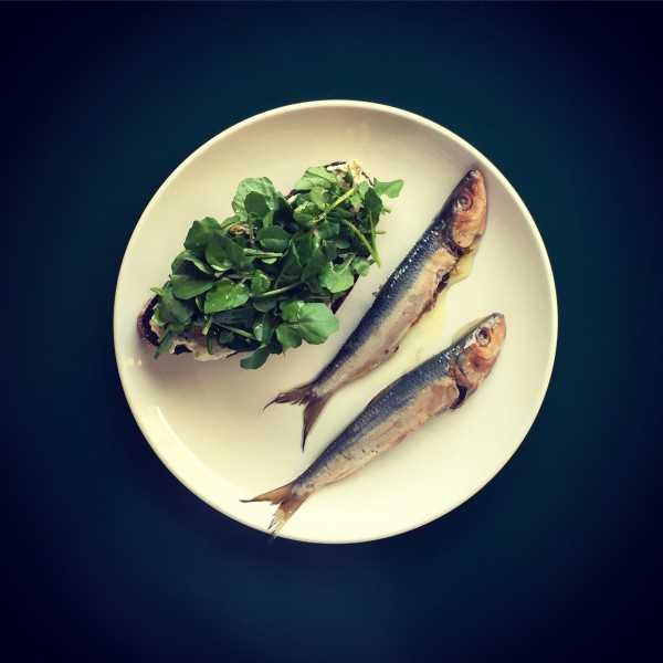 pickled sardines and rye